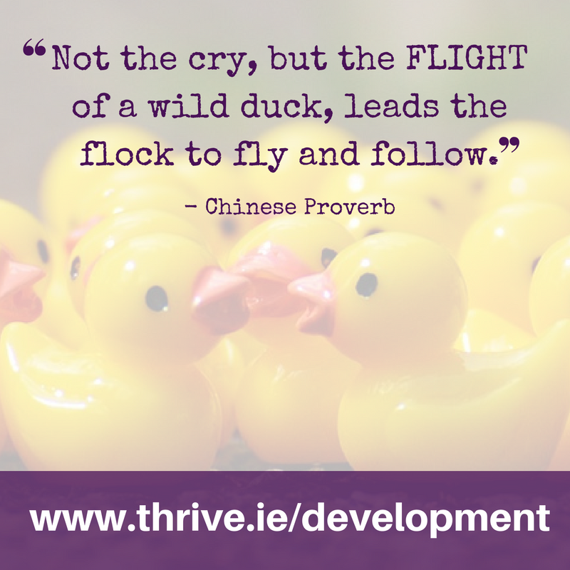 www.thrive.ie/development